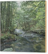 A Woodland View With A Rushing Brook Wood Print by Heather Perry