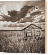 Abandoned Wood Print by Meirion Matthias