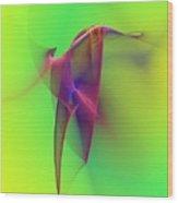 Abstract 091610 Wood Print by David Lane