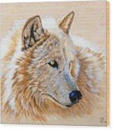 Adobe White Wood Print by Sandi Baker