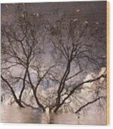 Afternoon Reflection Wood Print by Derek Selander