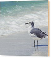 Alone On The Beach Wood Print by Thomas R Fletcher