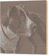 American Pit Bull Terrior 1 Wood Print by Stacey Jasmin