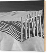 Amoreira Shadows Wood Print by John McKinlay
