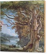 An Ancient Beech Tree Wood Print by Paul Sandby