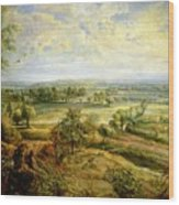 An Autumn Landscape With A View Of Het Steen In The Early Morning Wood Print by Rubens