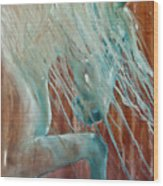 Andalusian Stallion Wood Print by Jani Freimann