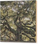 Angel Oak Tree Live Oak  Wood Print by Dustin K Ryan