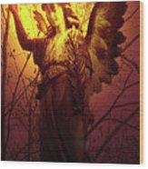 Angel Of Bless No. 03 Wood Print by Ramon Labusch