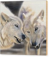 Arctic Pair Wood Print by Sandi Baker