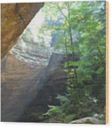 Ash Cave Wood Print by Mindy Newman