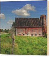 Ashtabula County Barn Wood Print by Tony  Bazidlo