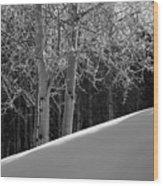 Aspencade Wood Print by Skip Hunt