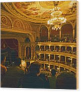 At The Budapest Opera House Wood Print by Madeline Ellis