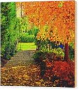 Autumn Colors Wood Print by Aron Chervin