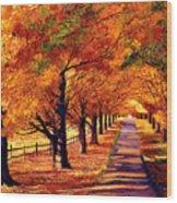 Autumn In Vermont Wood Print by David Lloyd Glover