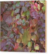 Autumn Ivy Wood Print by Jessica Rose