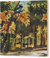 Autumn On The Natchez Trace Wood Print by Spencer Meagher