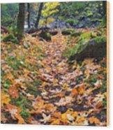 Autumn Path Wood Print by Mike  Dawson