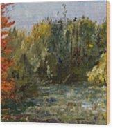 Autumn  Pond Wood Print by Nancy Albrecht