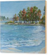 Autumn Shores - Jordan Lake Wood Print by L Diane Johnson