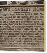 Babes Longest Homer Wood Print by David Lee Thompson