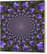 Balloon Flower Kaleidoscope Wood Print by Teresa Mucha