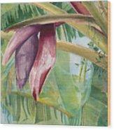 Banana Flower Wood Print by AnnaJo Vahle