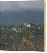 Bargathrough The Fog Wood Print by Leah Wiedemer
