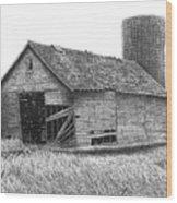 Barn 19 Wood Print by Joel Lueck