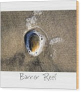 Barrier Reef Wood Print by Peter Tellone