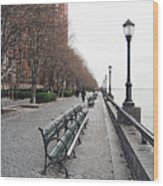 Battery Park Wood Print by Michael Peychich
