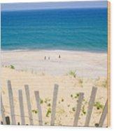 beach fence and ocean Cape Cod Wood Print by Matt Suess