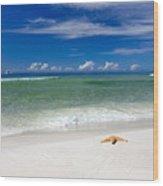 Beach Splendour Wood Print by Janet Fikar
