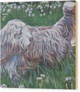 Bearded Collie Wood Print by Lee Ann Shepard