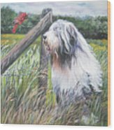 Bearded Collie With Cardinal Wood Print by Lee Ann Shepard