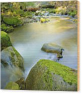 Beauty Creek Wood Print by Idaho Scenic Images Linda Lantzy