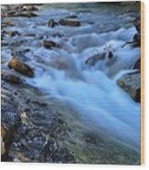 Beauty Creek Wood Print by Larry Ricker
