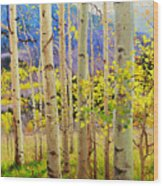 Beauty Of Aspen Colorado Wood Print by Gary Kim