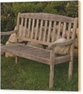 Bench With Stone Wood Print by Richard Mansfield