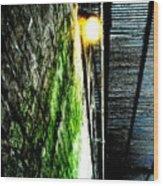 Beneath The Boardwalk Wood Print by Michael Grubb