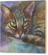 Bengal Cat Watercolor Art Painting Wood Print by Svetlana Novikova