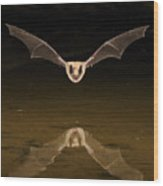 Big Brown Bat Reflection Wood Print by Scott  Linstead