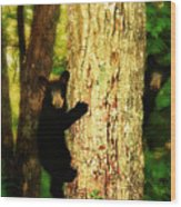 Black Bear Cubs Wood Print by Gray  Artus