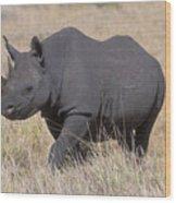 Black Rhino On The Masai Mara Wood Print by Sandra Bronstein