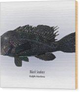 Black Seabass Wood Print by Ralph Martens