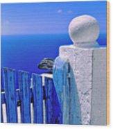 Blue Gate Wood Print by Silvia Ganora