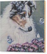 Blue Merle Collie Pup Wood Print by Lee Ann Shepard