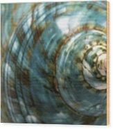 Blue Seashell Wood Print by Fabrizio Troiani