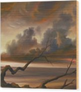 Botany Bay Wood Print by James Christopher Hill